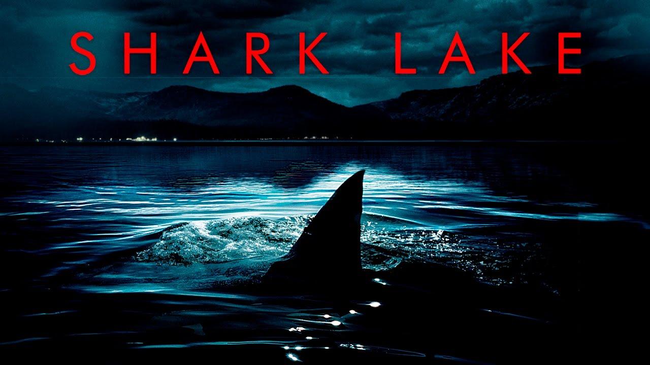 Shark Lake Stream
